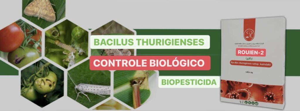 Bacilus Thurigienses Rouien 2