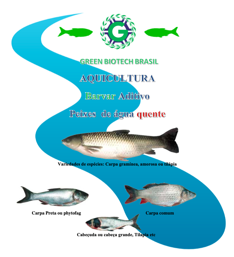 BARVAR fish
